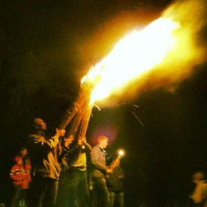 BVS ugnis